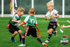 Mini Rugby - HSBC Festival