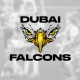 Dubai Falcons - new rugby club launched 2020