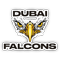 Falcons Rugby Club